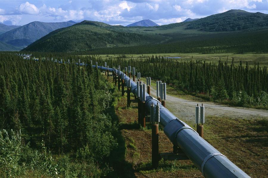 North America Photograph - The Trans-alaska Pipeline Runs by Melissa Farlow