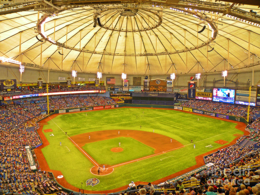 Baseball Photograph - The View From The Cheap Seats by Becky Wanamaker