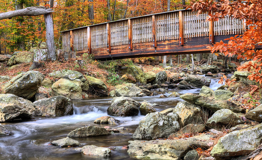 Cunningham Falls Photograph - The Walk by JC Findley