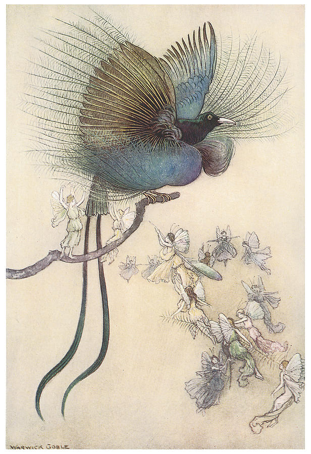 Warwick Goble Painting - The Water Babies The Most Beuatiful Bird Of Paradise by Warwick Goble