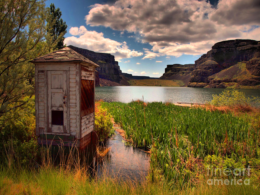Shed Photograph - The Water Shed by Tara Turner