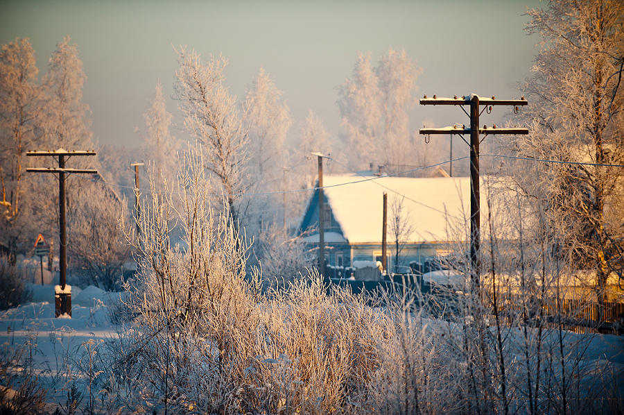 Winter Photograph - The Winter Country by Nikolay Krusser