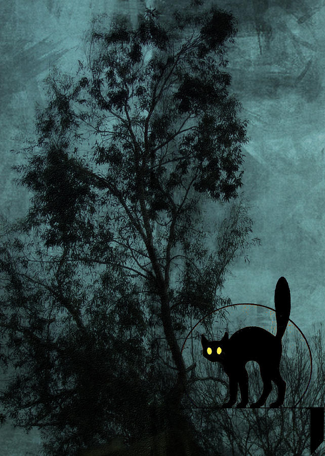 The Witchs Cat Digital Art by Sarah Vernon