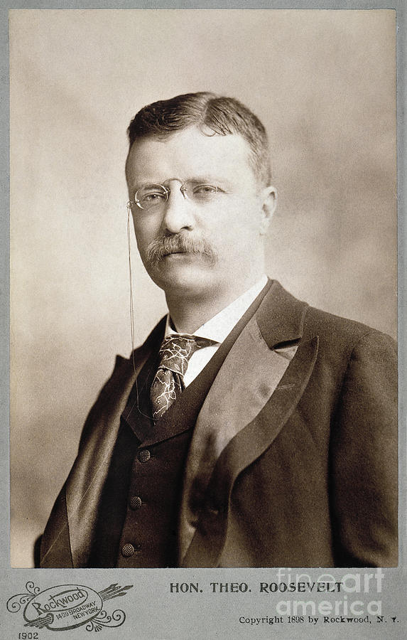 1898 Photograph - Thedore Roosevelt by Granger