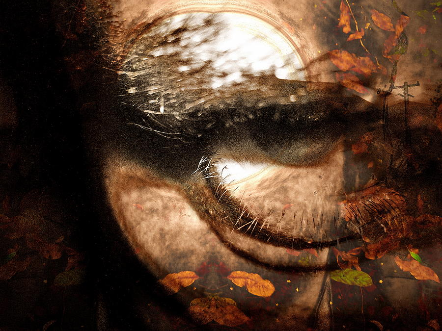 Eyes Digital Art - Third Season by Beto Machado