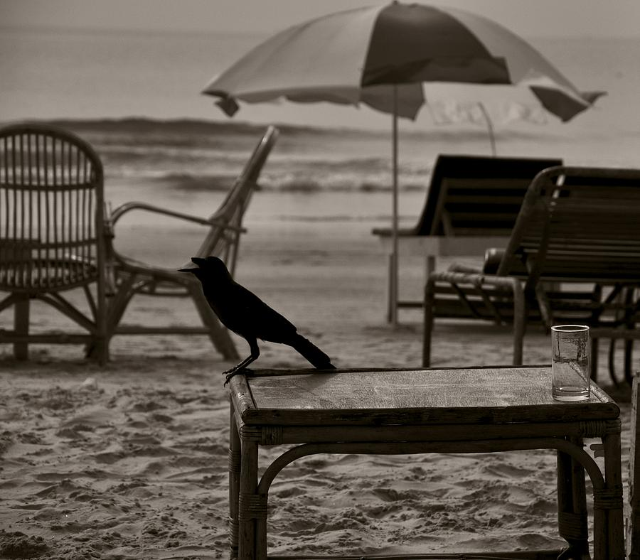 Sea Beach Photograph - Thirst by Vishal K