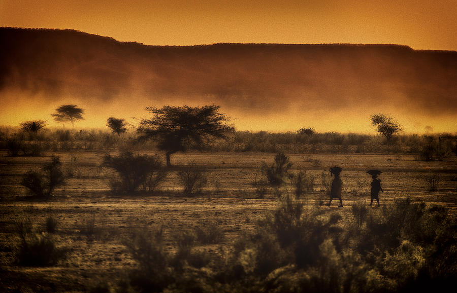 Northern Photograph - This Is Namibia No. 12 - Walking The Desert by Paul W Sharpe Aka Wizard of Wonders