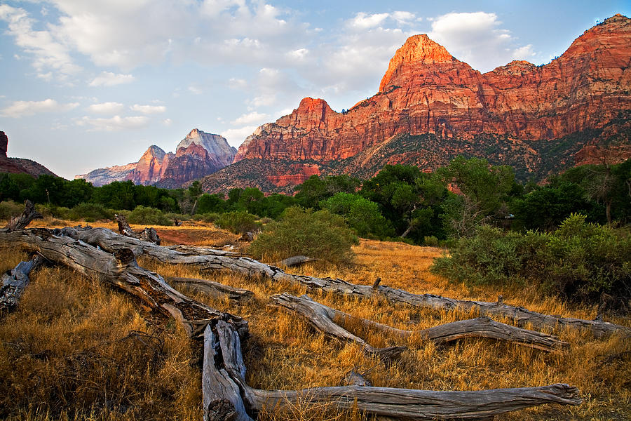Landscape Photograph - This Is Zion by Peter Tellone