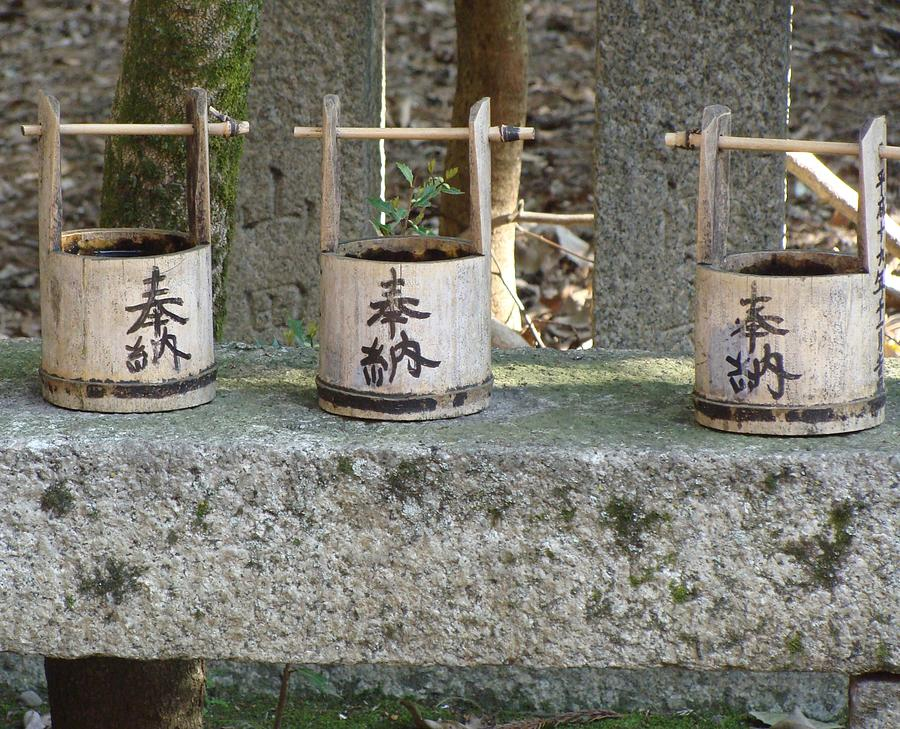 Japan Photograph - Three  by Emma Manners