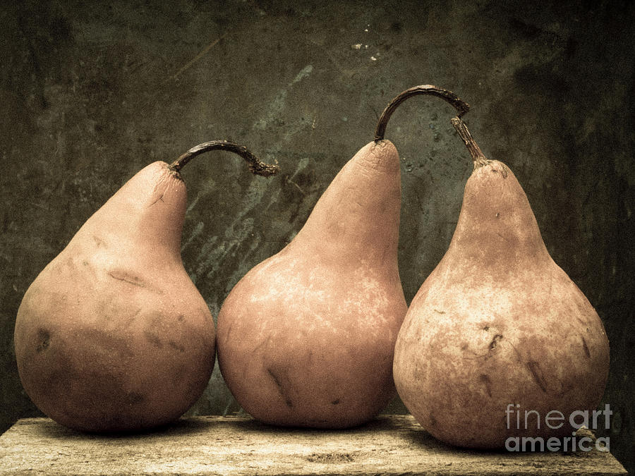 Pears Photograph - Three Pear by Edward Fielding