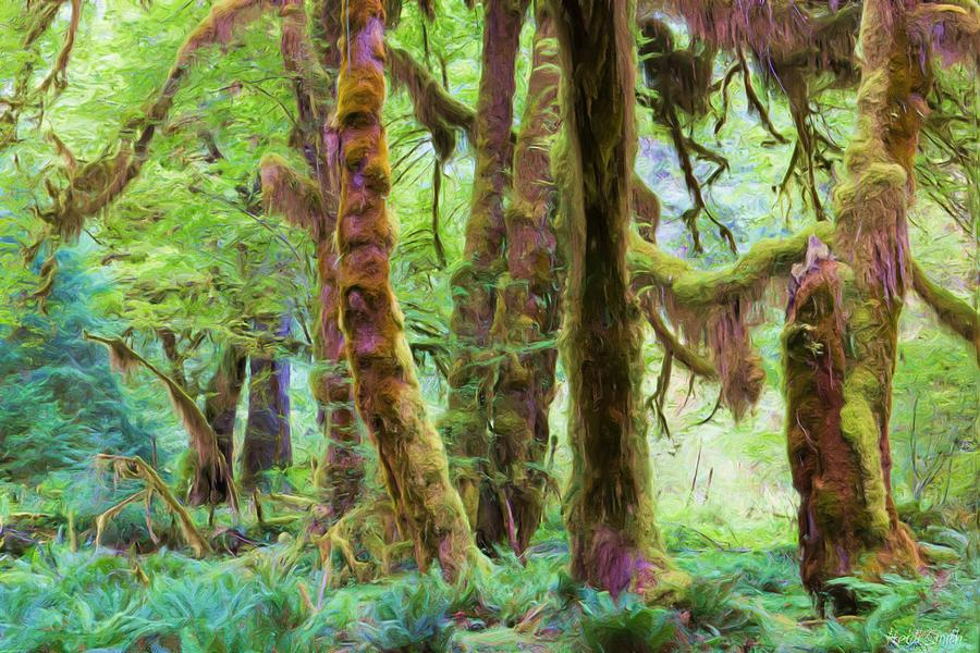 America Photograph - Through Moss Covered Trees by Heidi Smith