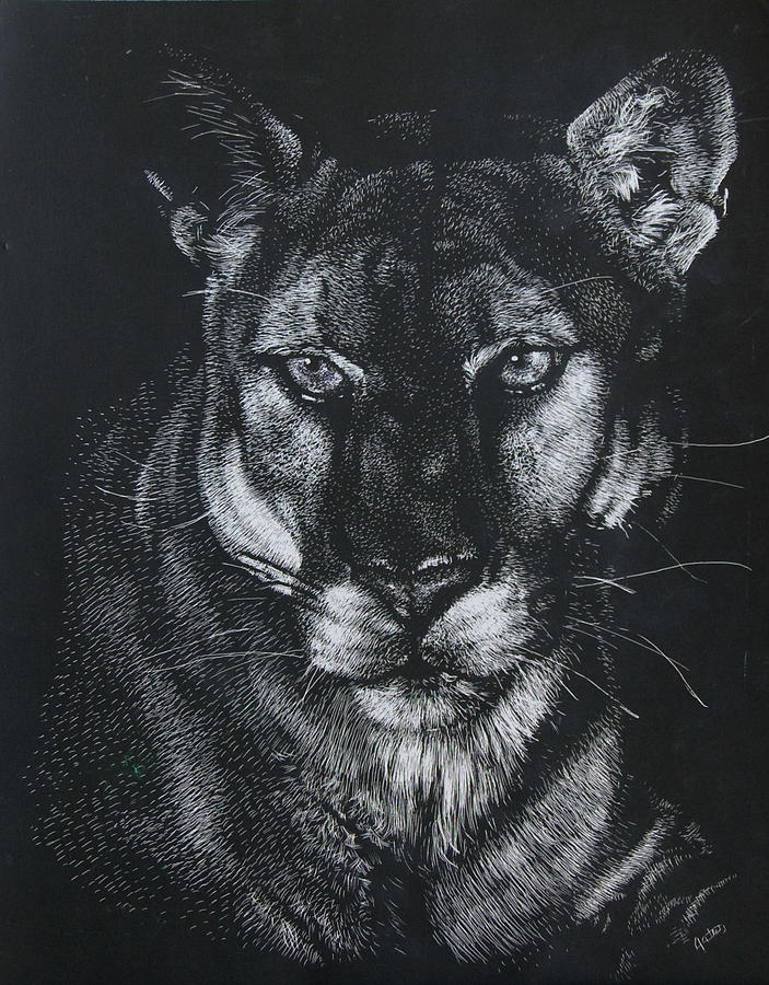 Scratchboard Mixed Media - Through The Darkness by Joanna Gates