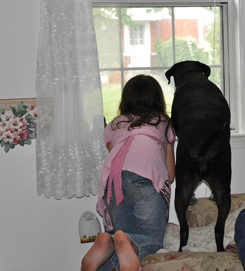 Child And Dog Photograph - Through The Looking Glass by Paul Ward