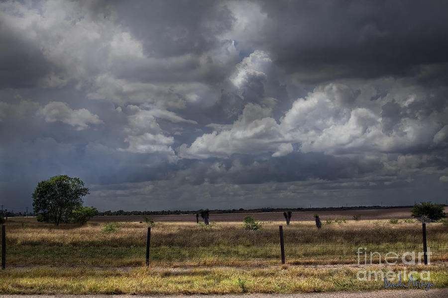 Hdr Photograph - Thunder In The Distance by Dinah Anaya