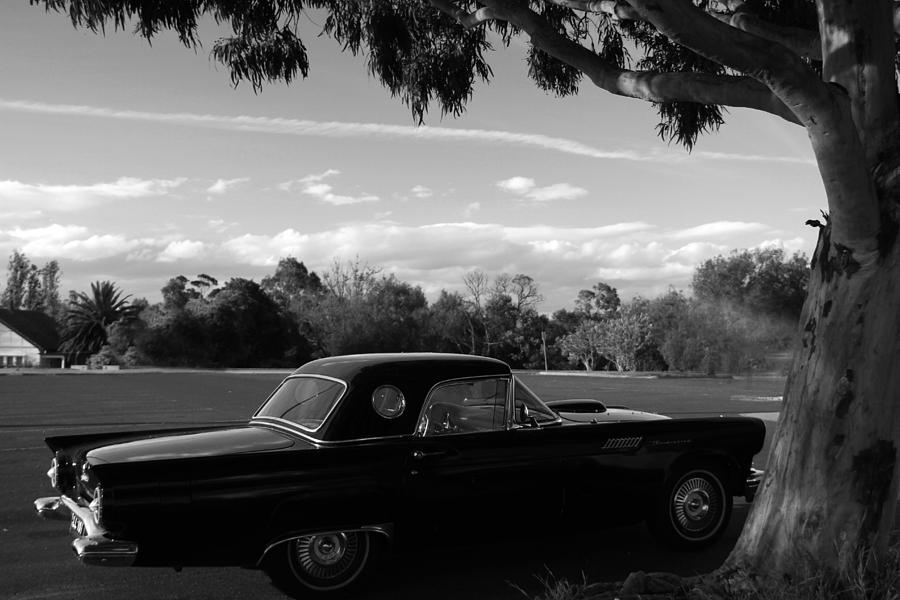 Vintage Photograph - Thunderbird by Noel Elliot