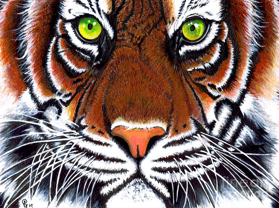 Tiger Acrylic Painting by Debbie Engel