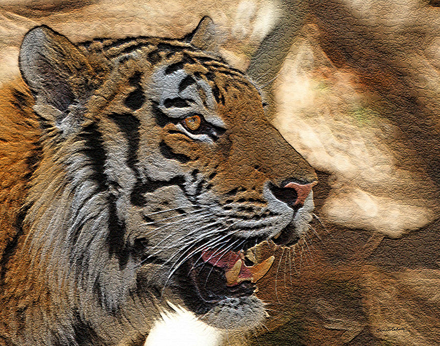 Tiger Photograph - Tiger De by Ernie Echols