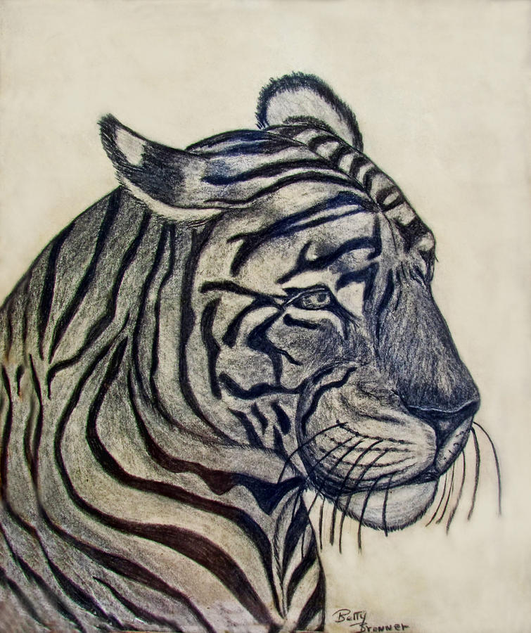 Animals Drawing - Tiger I by Debbie Portwood
