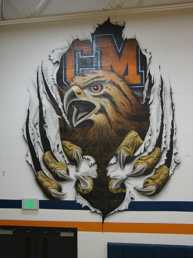 Tigerhawk Mural Painting By Michael Dennis