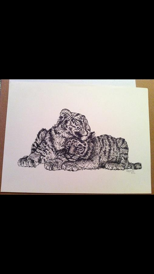 Pen Drawing - Tigers by Erin Harris