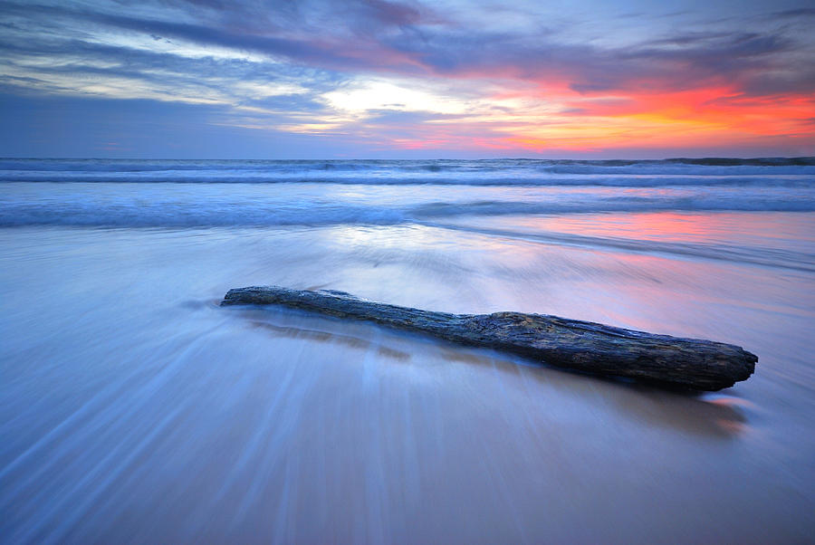 Abstract Photograph - Timber On The Beach by Teerapat Pattanasoponpong