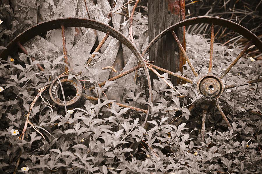 Wagon Wheels Photograph - Time Forgotten by Carolyn Marshall