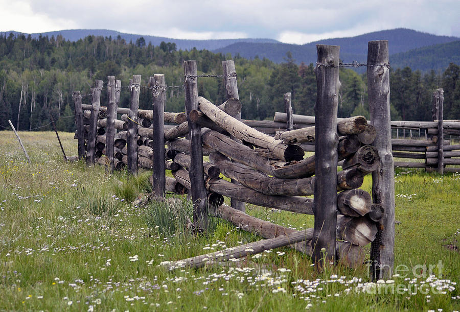 Corrals - Western Images - Old Corrals - Old Fences - Corral Photography Photograph - Timeless  by Juls Adams