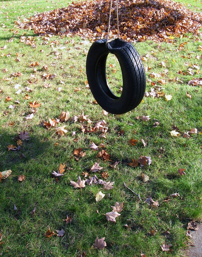 Tire Swing Photograph - Tire Swing by Todd Sherlock