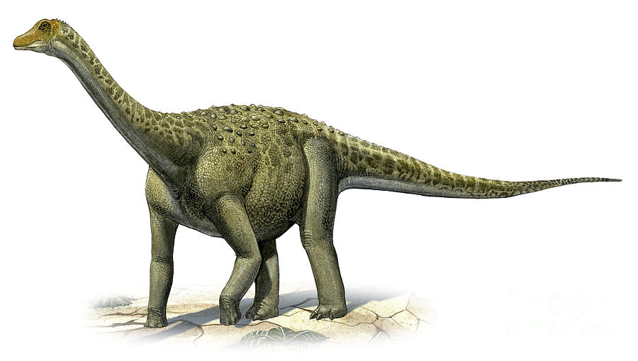 Horizontal Digital Art - Titanosaurus Indicus, A Prehistoric Era by Sergey Krasovskiy