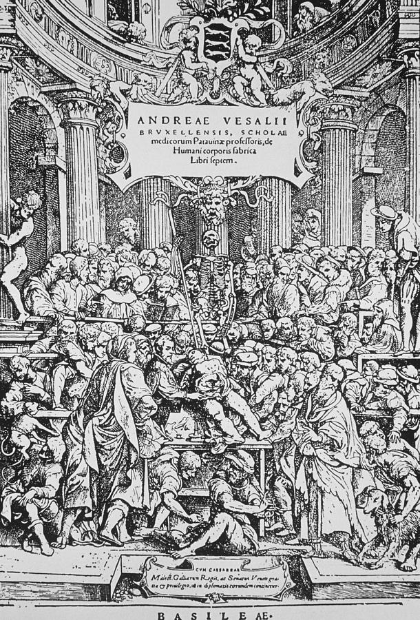 Dissection Photograph - Title Page To Vesalius Book On Anatomy by Dr Jeremy Burgess