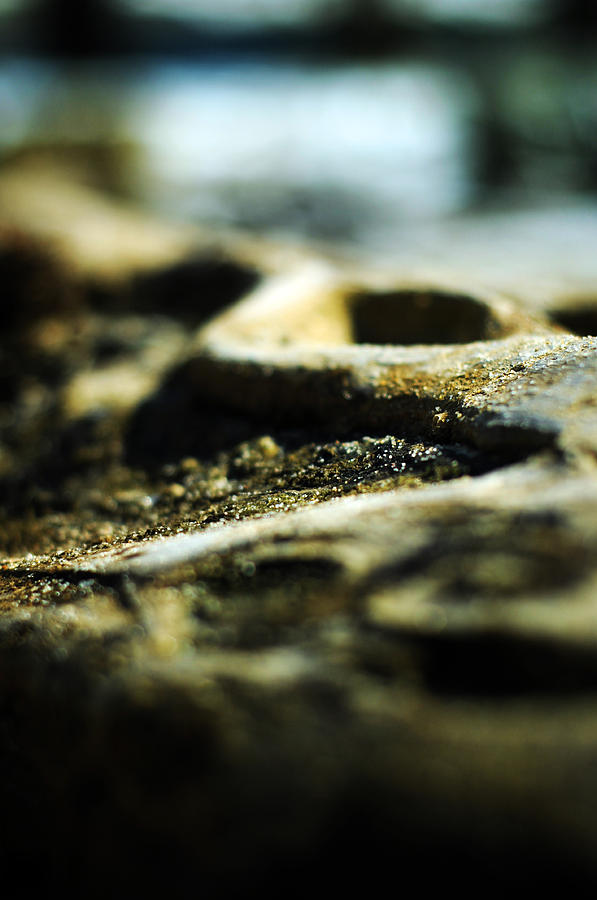Abstract Realism Photograph - To The Sea by Rebecca Sherman