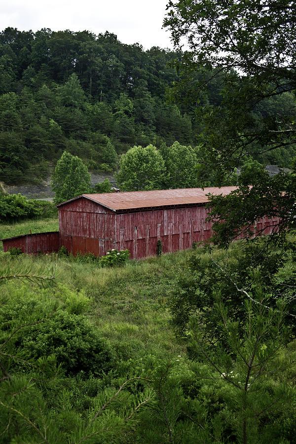 Tobacco Photograph - Tobacco Barn From Afar by Douglas Barnett