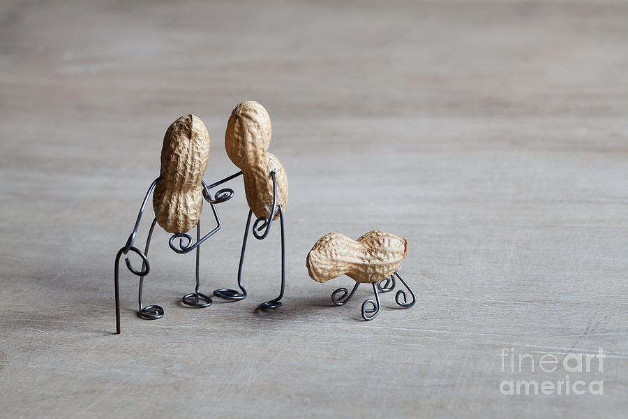 Peanut Photograph - Together 02 by Nailia Schwarz