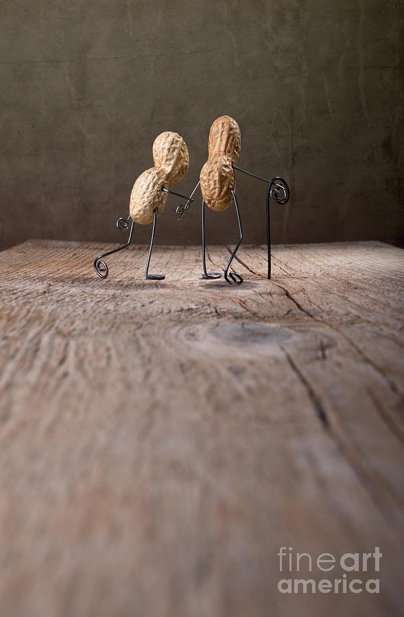 Peanut Photograph - Together 03 by Nailia Schwarz