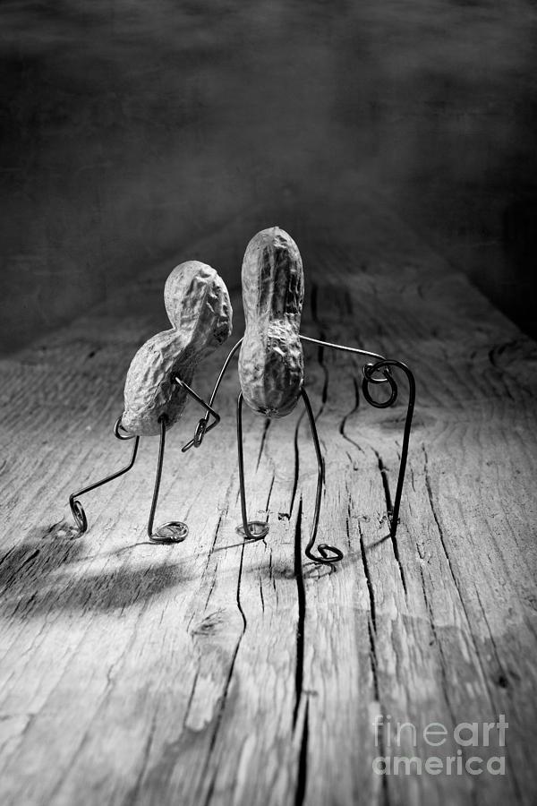 Peanut Photograph - Together 06 by Nailia Schwarz