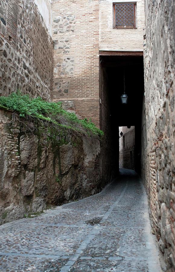Toledo Photograph - Toledo Narrows by Lorraine Devon Wilke