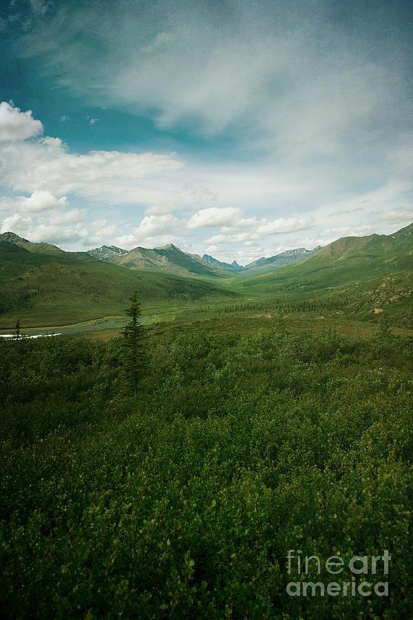 Landscape Photograph - Tombstone Mountain by Priska Wettstein