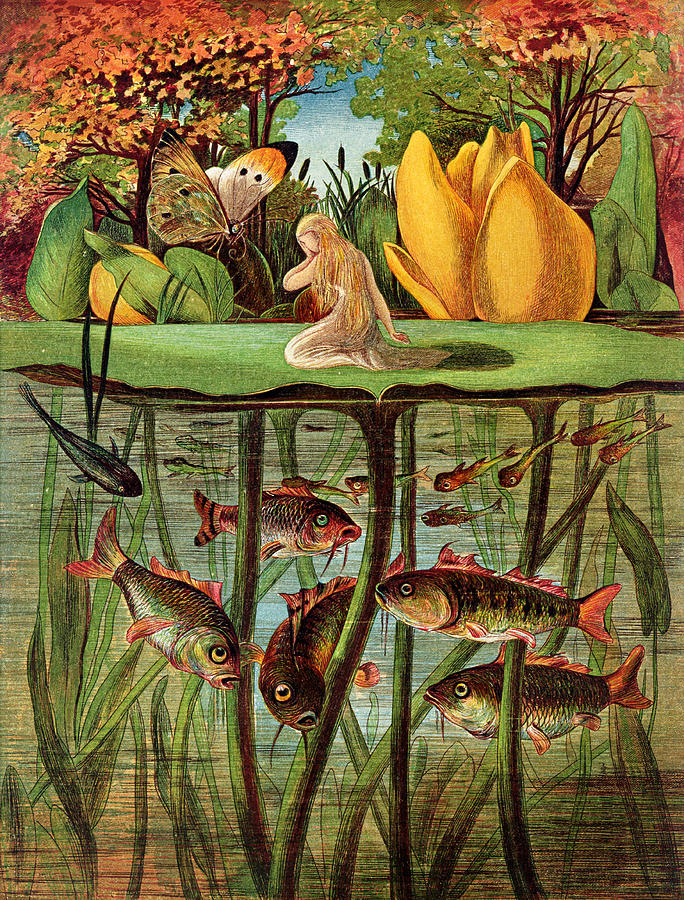 Fish; Carp; Goldfish; Pond; Butterfly; Under Water; Poucette Painting - Tommelise Very Desolate On The Water Lily Leaf In thumbkinetta  by Hans Christian Andersen and Eleanor Vere Boyle