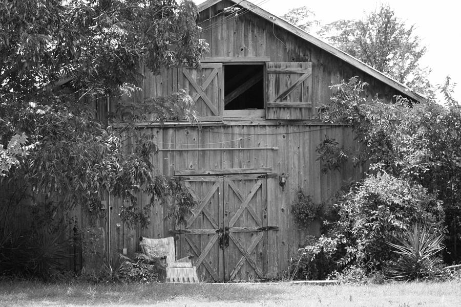 Country Photograph - Too Full For One More Thing.  by Catherine Link