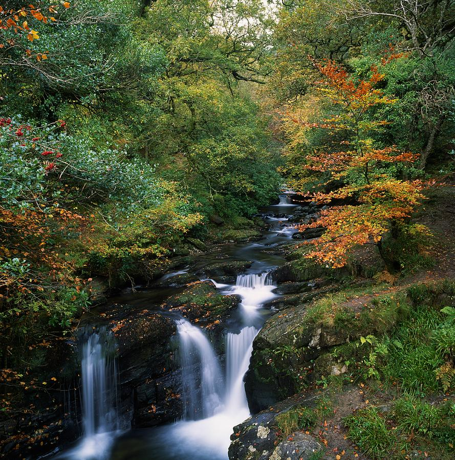 Autumn Leaves Photograph - Torc Waterfall, Ireland,co Kerry by The Irish Image Collection
