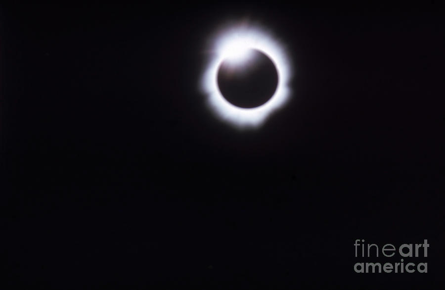 Total Solar Eclipse Photograph - Total Solar Eclipse by Photo Researchers