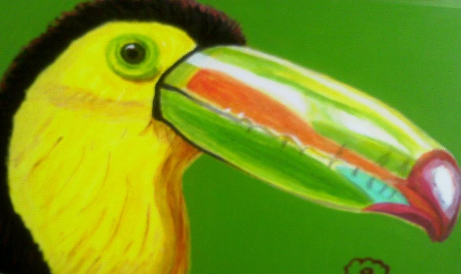 Toucan Bird Painting by Annette Stovall