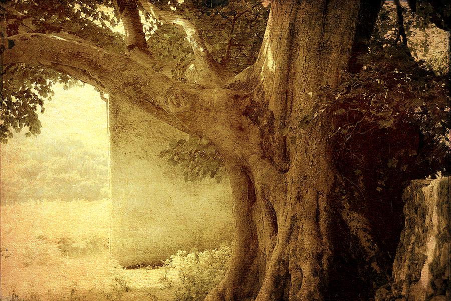 Ireland Photograph - Touch Of History. Wicklow. Ireland by Jenny Rainbow