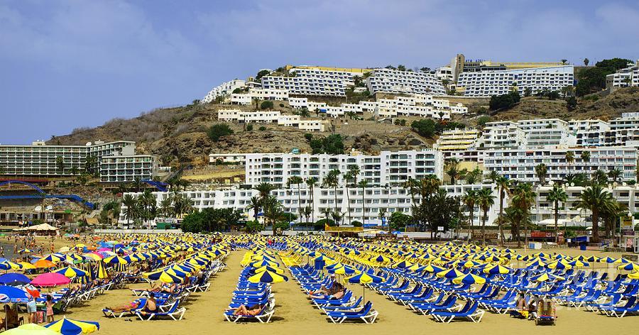 Hammock Photograph - Tourist Paradise by Alfredo Rodriguez