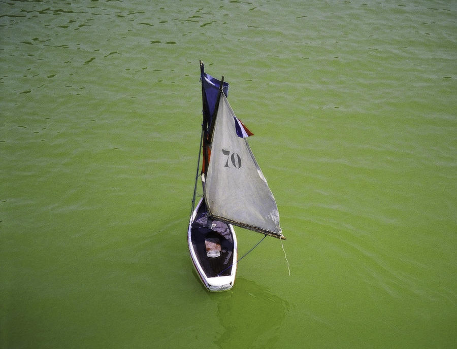 Landscape Photograph - Toy Sailboat On Pond by Donna Munro