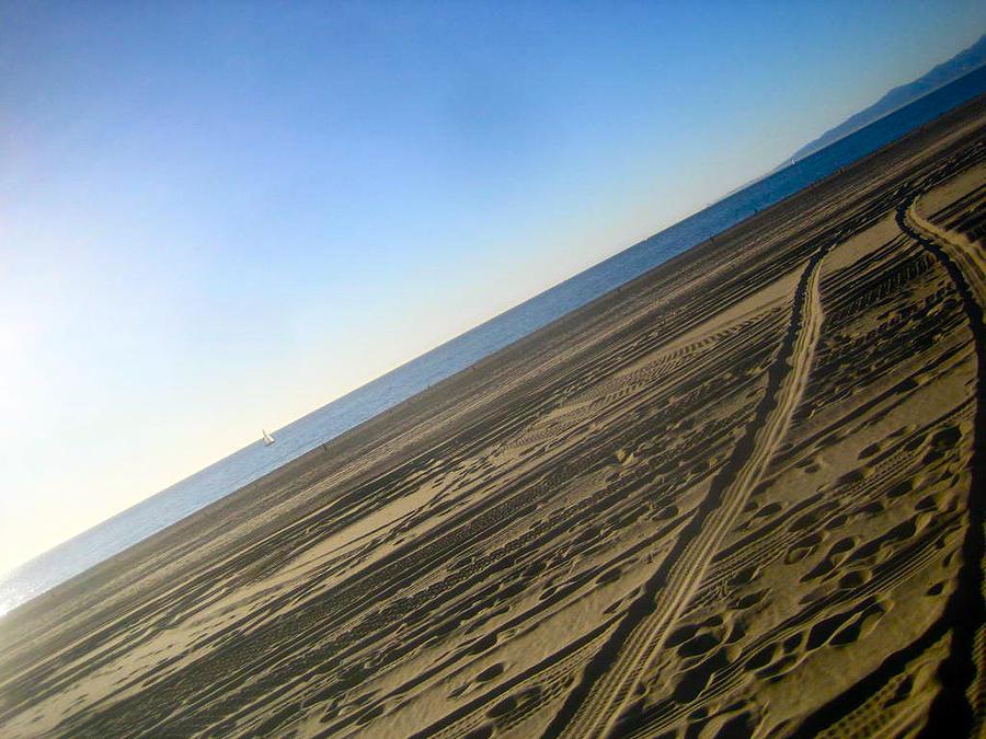 Beach Photograph - Tracks by Jon Berry OsoPorto