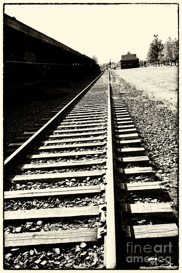 Train Photograph - Tracks Of Our Ancestors by Leslie Leda