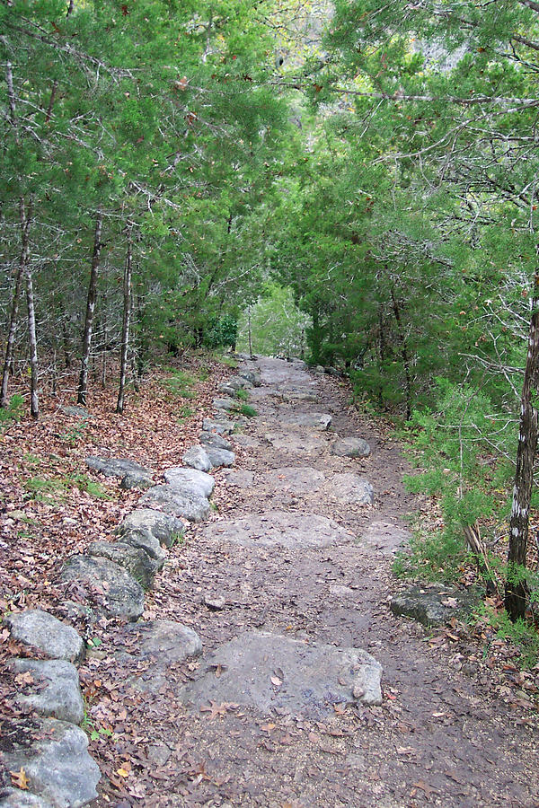 Hiking Trail Photograph - Trail To Peace by Brenda Donko