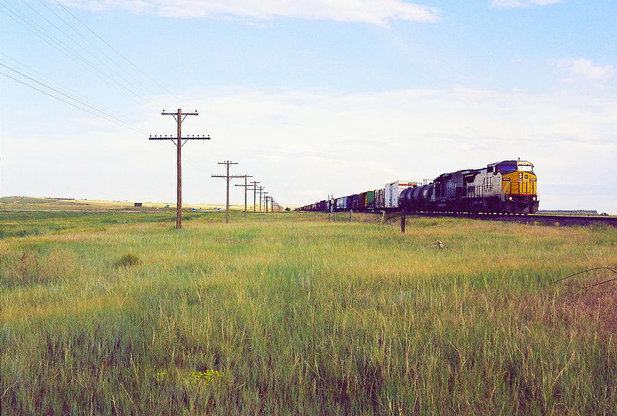 Train And Poles Photograph by Trent Mallett