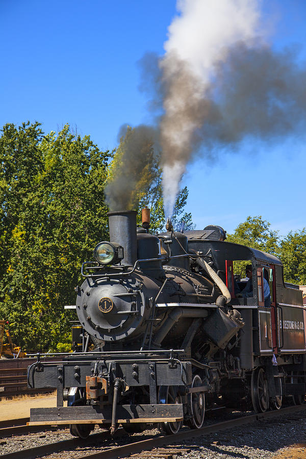 Train Bluestone Photograph - Train Number One by Garry Gay